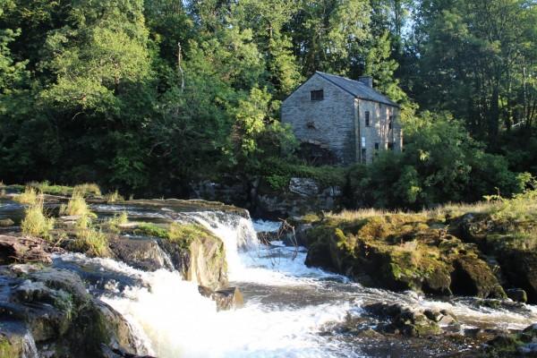 Morlogws-Farm-Holidays-Cenarth-Falls-I9